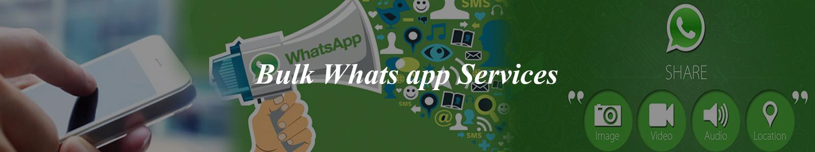 Bulk Whats app services