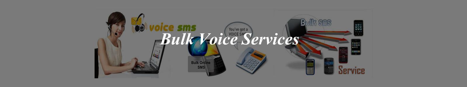 bulk voice services